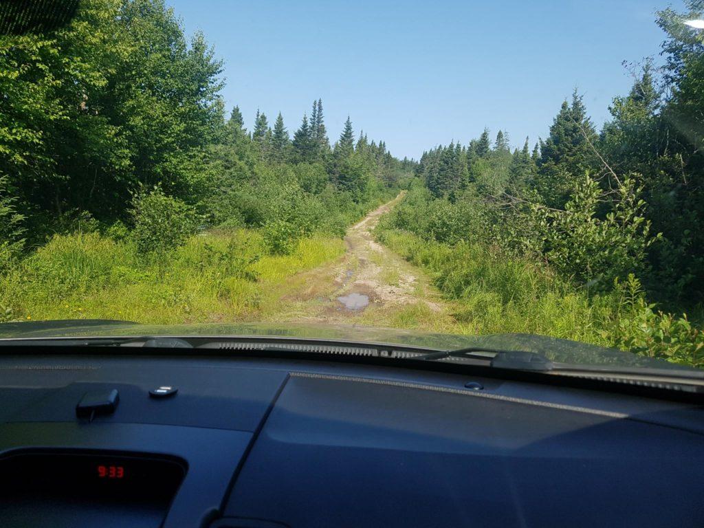 Log-road