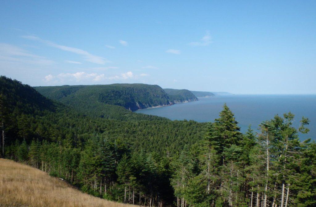 Bay of Fundy - Fundytrail