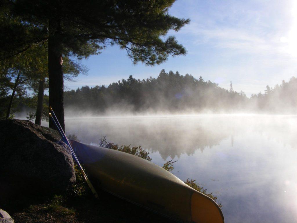 Kanu im Morgentau
