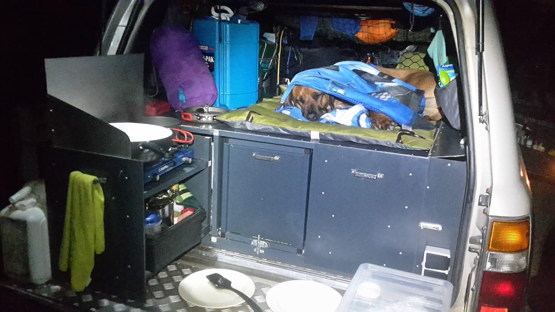 Hund liegt im Kofferaum zugedeckt und schläft