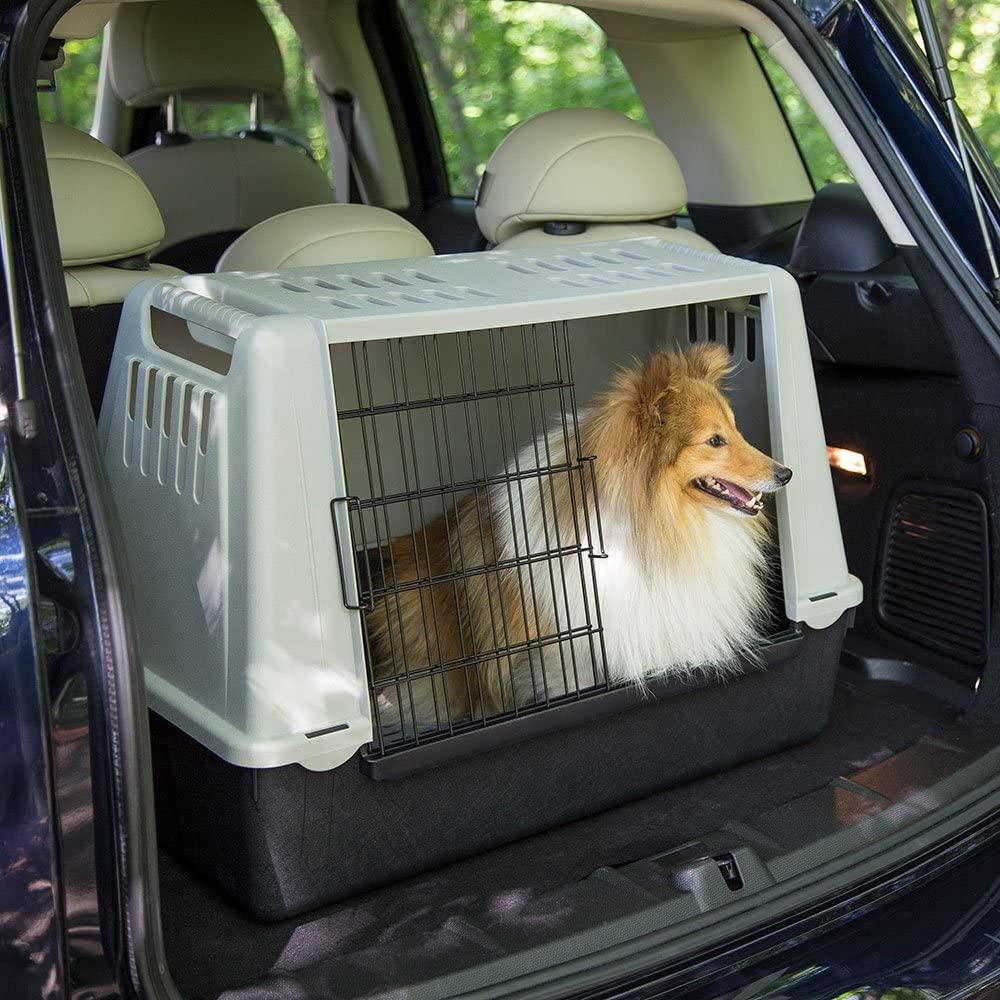 Hundebox aus Plastik